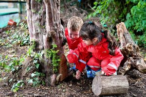 forest school in worcester children learning outdoors