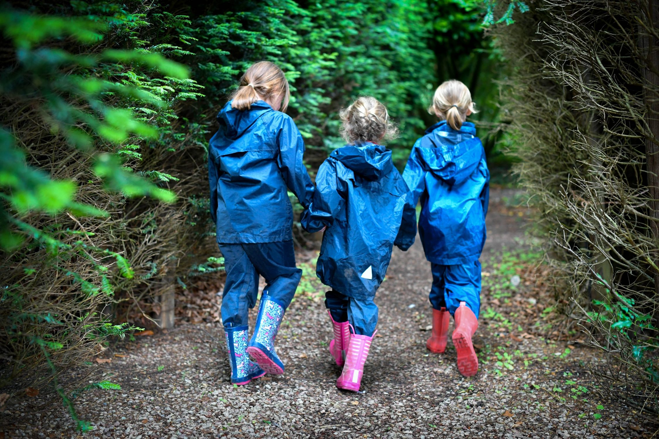 forest school1