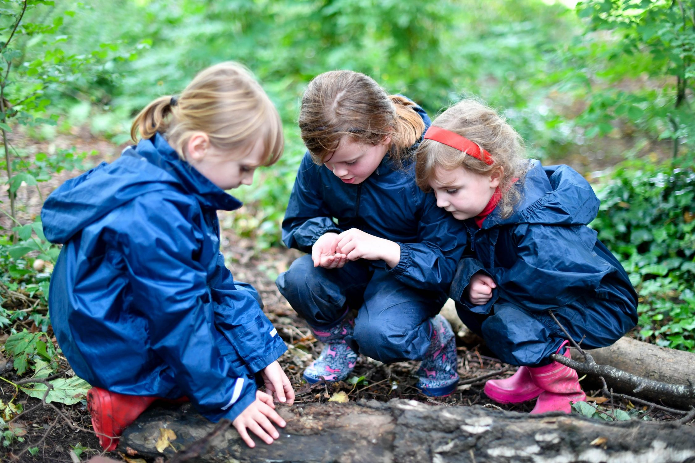 forest school8